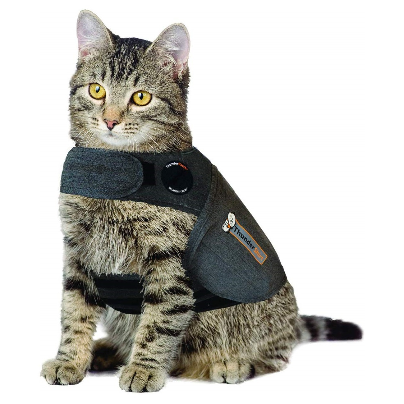 What Size Vest Should I Get For A Dog