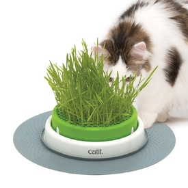 Catit 2.0 Cat Grass Planter Kit with Starter Grass Pack