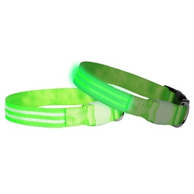"DogLite LED ""Double Trouble"" Light-up Dog Collar - Green Glow"