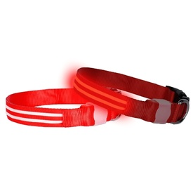 "DogLite ""Double Trouble"" LED Light-up Dog Collar- Red Nite"