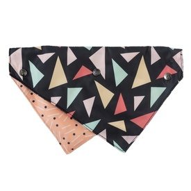 "Fuzzyard Reversible Bandana for Dogs and Cats - ""Rad"""