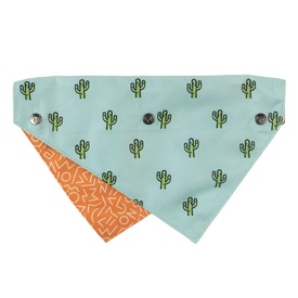 Fuzzyard Reversible Bandana for Dogs and Cats - Tucson Cactus