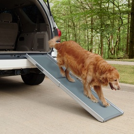 Solvit Deluxe Telescopic Pet Ramp - 2 Sizes