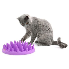 Northmate Catch Interactive Slow Food Cat Bowl