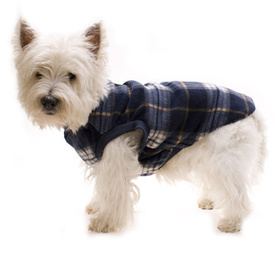 Blue Tartan Dog Pyjamas by Hamish McBeth