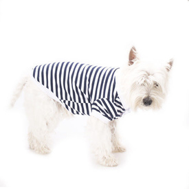 Blue Striped Polo Shirt for Dogs by Hamish McBeth