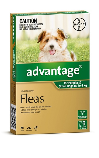 Advantage Spot-On Flea Control Treatment for Dogs 6-Pack - Kills Fleas Fast - All Sizes Available image 0