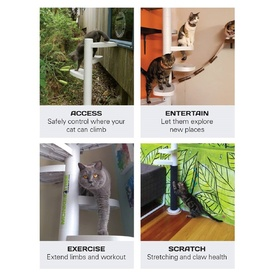 Monkee Tree - The Scalable Cat Climbing Ladder 12 Trunk Starter Pack image 11