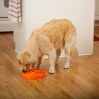 Outward Hound Fun Feeder Slow Bowl for Dogs - Orange Coral Maze image 0