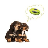 KONG AirDog Squeaker Football Non-Abrasive Fetch Dog Toy image 1