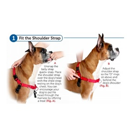 Petsafe Easy Walk Front-Attachment Harness and Lead Set image 1