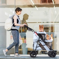 Ibiyaya Double Decker Pet Stroller for Multiple Pets - Silver Gray image 4