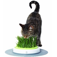 Catit 2.0 Cat Grass Planter Kit with Starter Grass Pack image 5