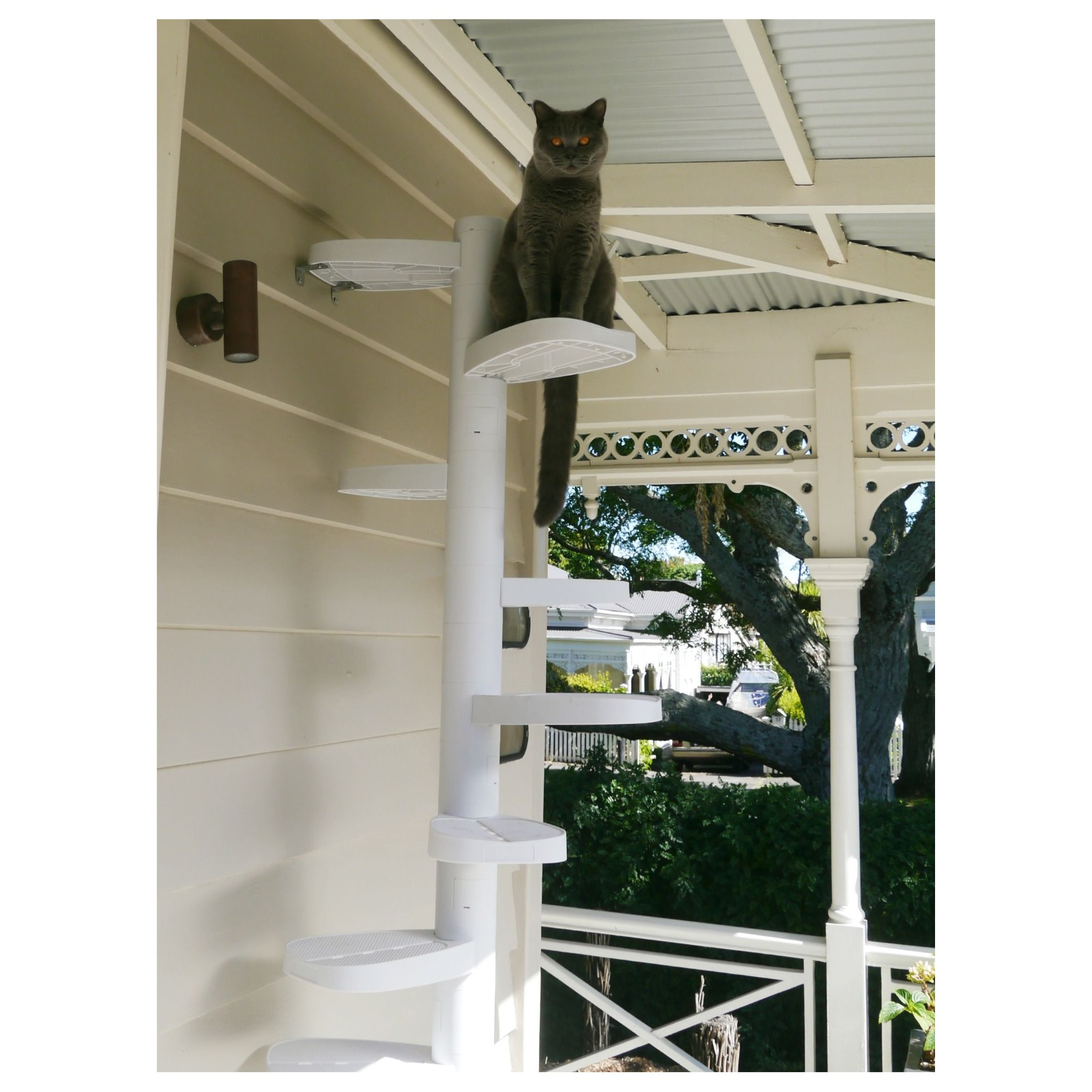 Monkee Tree - The Scalable Cat Climbing Ladder 12 Trunk Starter Pack image 6