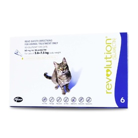 Revolution Flea & Worm Control for Cats & Kittens - 6 pack
