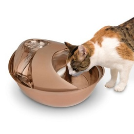 Pioneer Pet Raindrop Stainless Steel Water Fountain for Dogs & Cats - Rose Gold