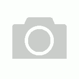 KONG Dotz Circle - Textured Triangle Shaped Rubber Squeaker Dog Toy