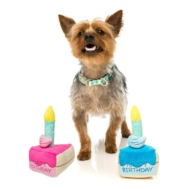 Fuzzyard Birthday Cake & Candle PLush Squeaker Dog Toy