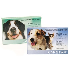 Capstar Fast Flea Knockdown for Cats and Dogs
