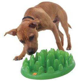 Northmate Green Mini Interactive Slow Food Dog Bowl