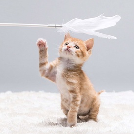 Pidan Shake Shake Suction Cat Teaser with Replaceable White Feathers