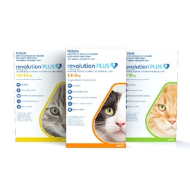Revolution PLUS Flea, Worm & Tick Topical Prevention for Kittens &  Adult Cats 3-Pack