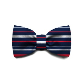 Zee Dog Bow Tie for Cats or Dogs - Rocket