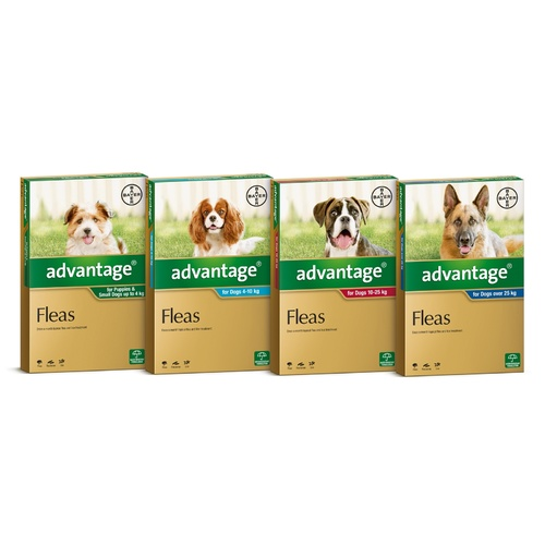 Advantage Spot-On Flea Control Treatment for Dogs 6-Pack - Kills Fleas Fast - All Sizes Available main image