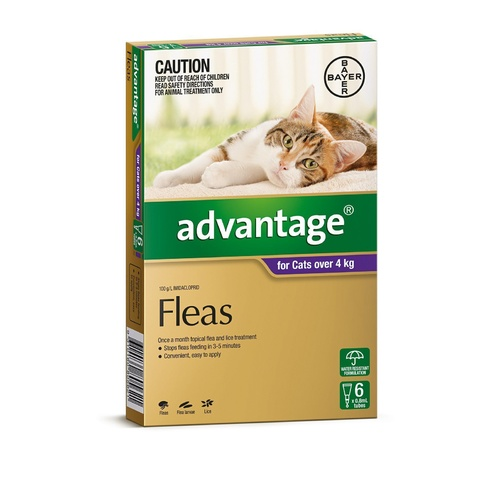 Advantage Spot-On Flea Control Treatment for Cats over 4kg main image